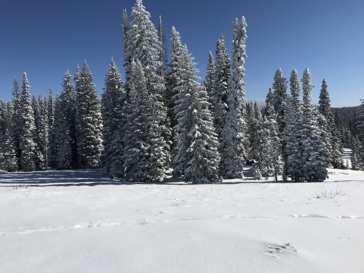 Pictures from West Summit Pass.
