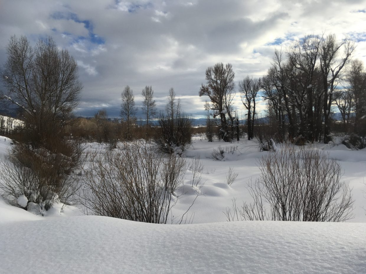 Snow coats the banks of the Yampa River.