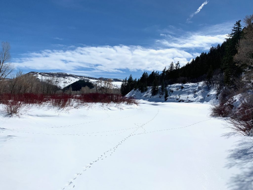 The Yampa River is hidden by snow in Hayden.
