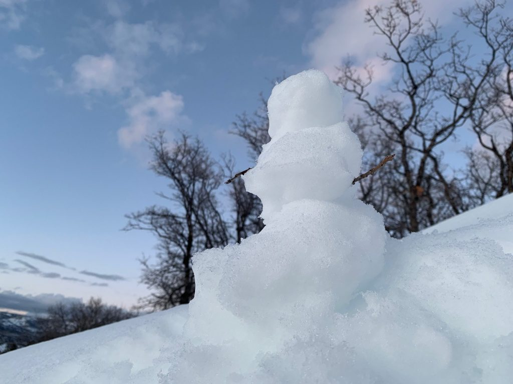 A tiny snowman hangs on in the sunshine on Blackmer Trail.