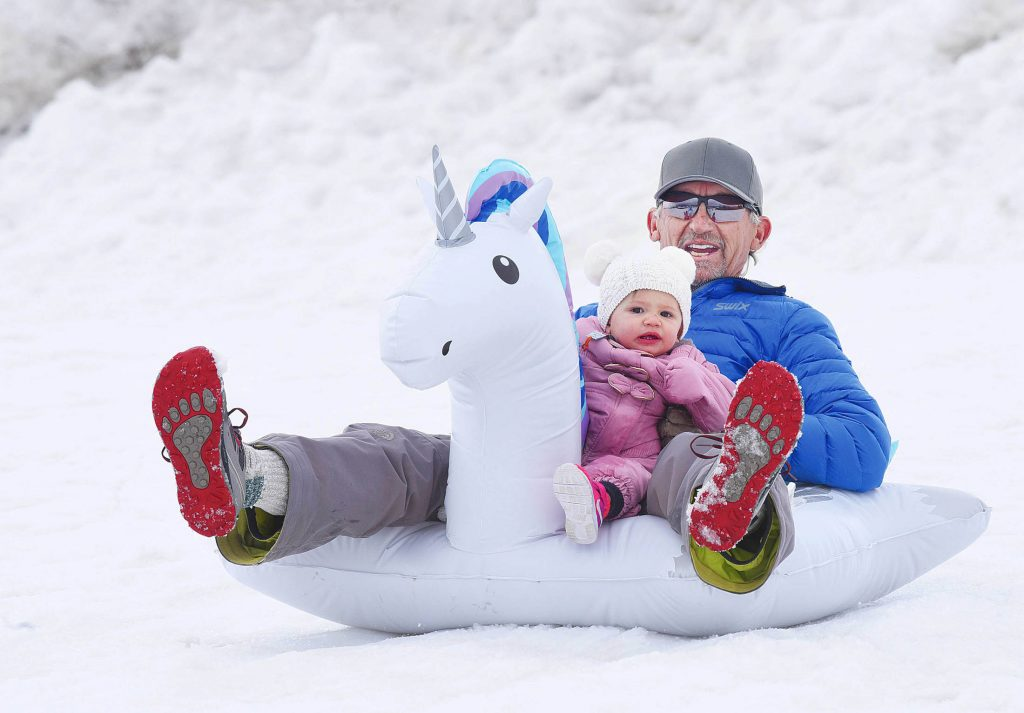Jerry Laszewski and his granddaughter Kinsley Brook Laszewski sled down the hill in the Steamboat II neighborhood Friday afternoon.