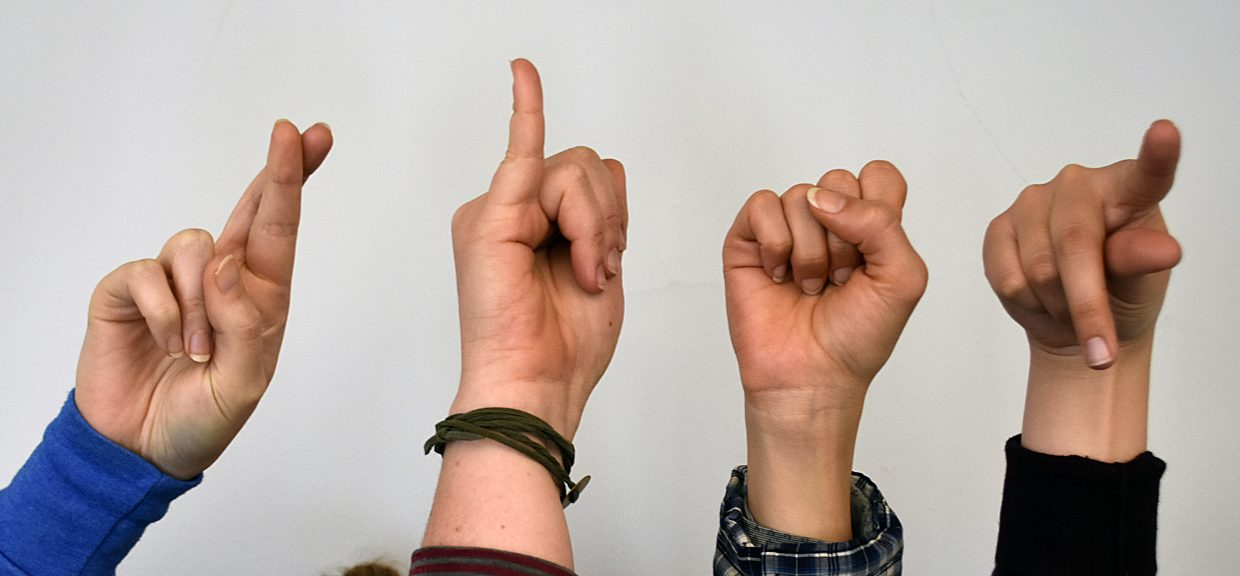 New program seeks to increase access to sign language