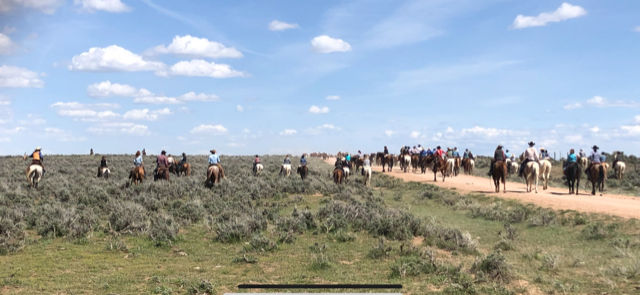 Horses are on the move in Maybell.