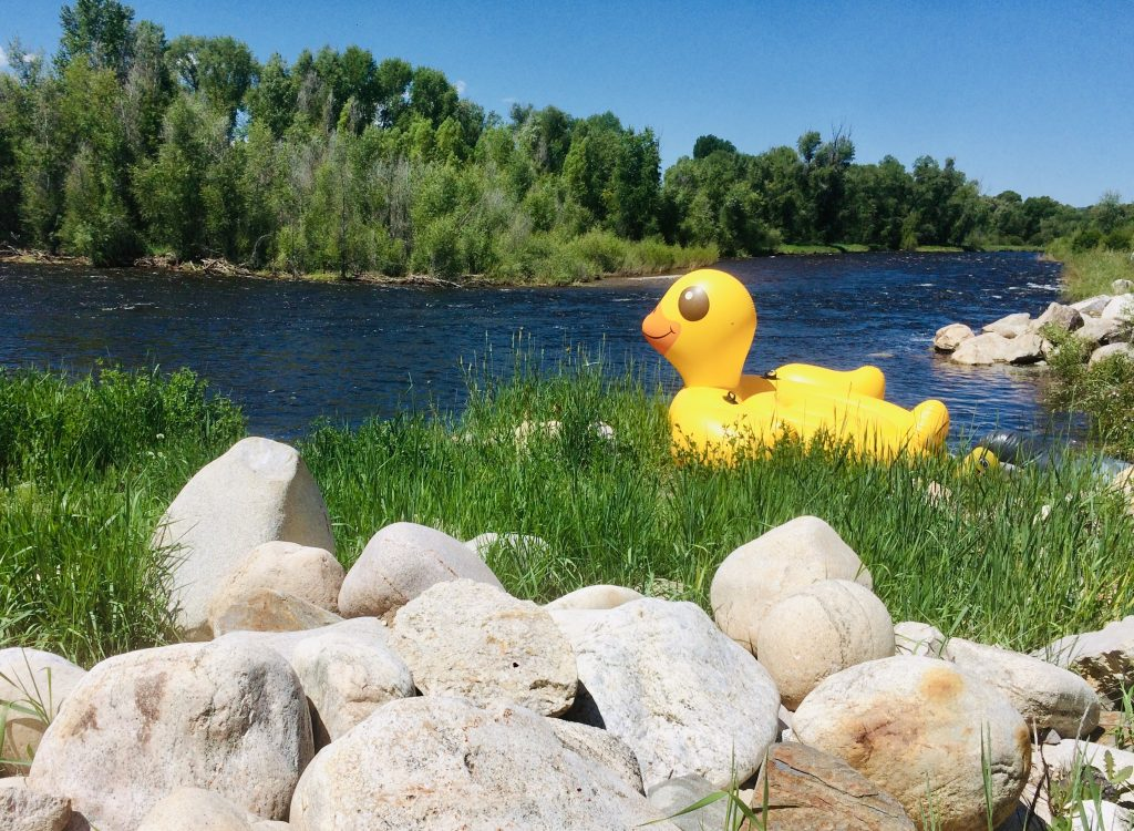 An inflatable rubber deck gears up for the Yampa River.