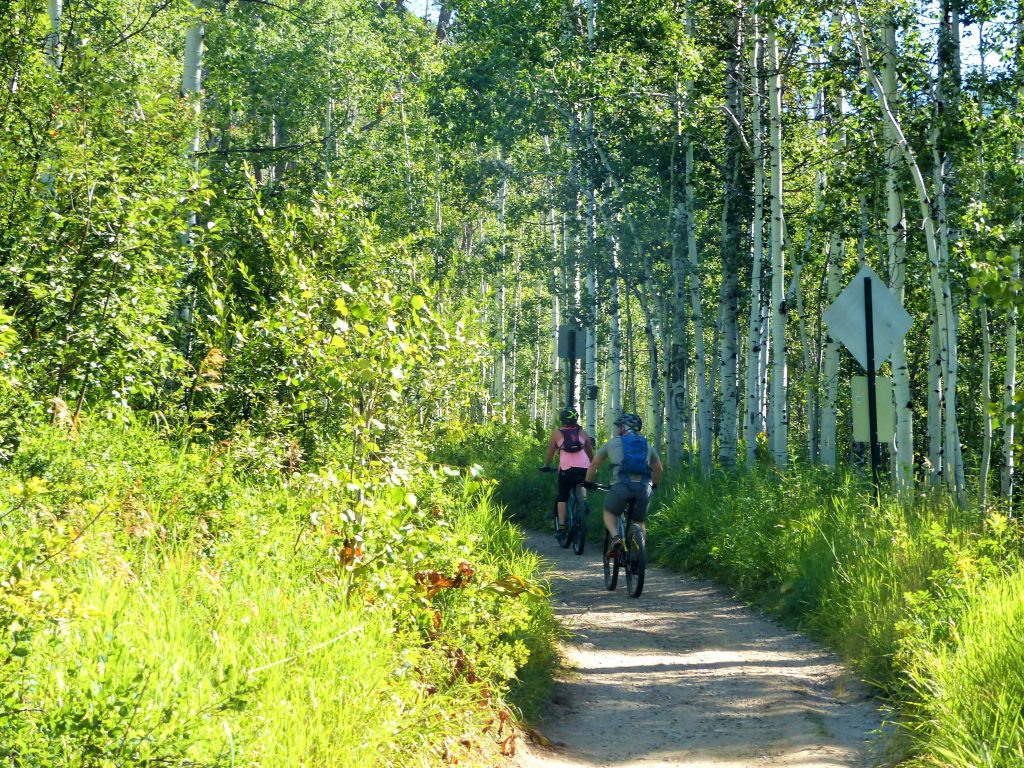 Spring Creek Trail in Steamboat