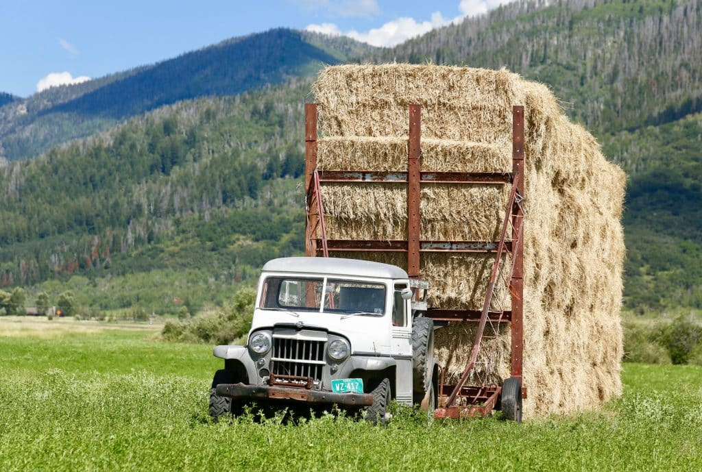 That's a lot of hay!!! On Routt County Road 22, off Colo. Highway 131.