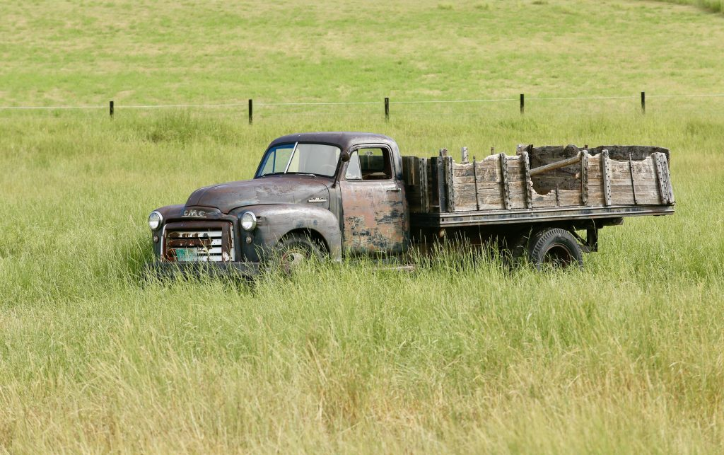 A field grows up around a truck along Routt County Road 44.